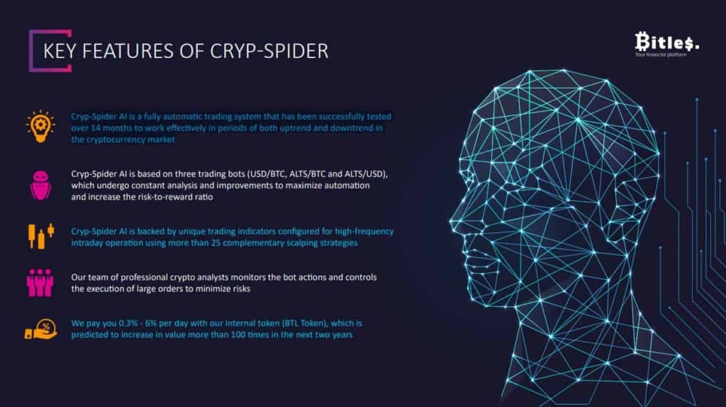 bitless cryp spider ai 1024x575 - Bitles Review: Long-term project 2020 - Maybe the next Bitconnect?